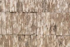 Fundo de madeira da parede Foto de Stock