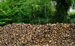 Fundo de madeira da pilha Imagens de Stock Royalty Free