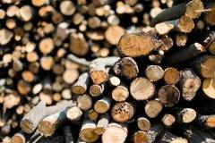Fundo de madeira da pilha Imagem de Stock