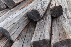 Fundo de madeira da textura, árvores cutted imagens de stock