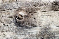 Fundo de madeira da textura foto de stock