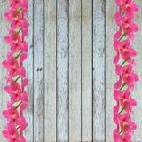 Fundo de madeira da textura com flor Fotos de Stock Royalty Free