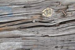 Fundo de madeira da textura com parafuso imagem de stock