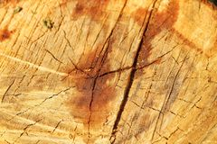 Fundo de madeira da textura das quebras Fotos de Stock