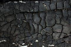 fundo de madeira da textura do carvão vegetal Imagens de Stock Royalty Free