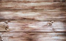 Fundo de madeira da textura, pranchas de madeira Fotos de Stock