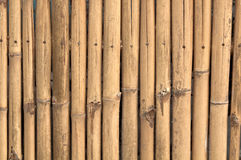 Fundo de madeira de bambu da parede Fotografia de Stock Royalty Free