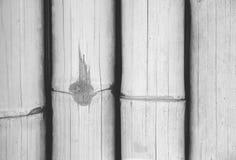 Fundo de madeira de bambu seco cinzento da textura Imagem de Stock