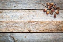 Fundo de madeira do celeiro com decoração da queda imagem de stock royalty free