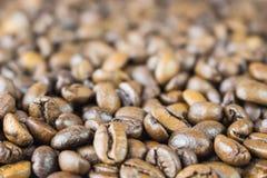 Fundo de madeira do grunge dos feijões de café na opinião lateral do close up da tabela Foto de Stock Royalty Free
