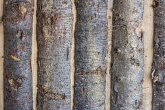 Fundo de madeira do log Foto de Stock