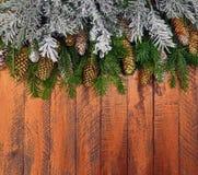 Fundo de madeira do Natal com árvore de abeto Imagens de Stock