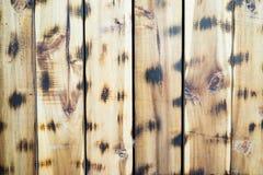 Fundo de madeira do painel Fotos de Stock