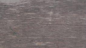 Fundo de madeira do testure Foto de Stock Royalty Free
