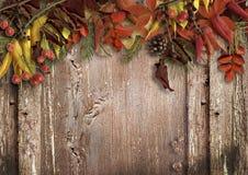 Fundo de madeira do vintage com folhas de outono Fotografia de Stock Royalty Free