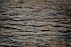 Fundo de madeira escuro da textura Imagens de Stock Royalty Free
