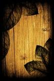 Fundo de madeira floral sazonal Foto de Stock Royalty Free