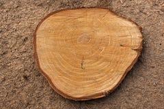 Fundo de madeira muito velho Fotografia de Stock Royalty Free