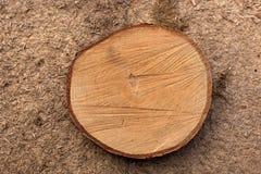 Fundo de madeira muito velho Imagens de Stock