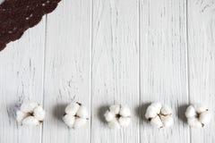 Fundo de madeira no branco com laço e cores naturais do algodão Bandeira do cumprimento do projeto, cartão para mulheres, meninas imagem de stock royalty free