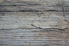Fundo de madeira obsoleto no matiz branco e azul como a textura de madeira cinzenta Fotografia de Stock