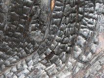 Fundo de madeira preto queimado com quebras e teste padrão modelados da grão imagem de stock royalty free