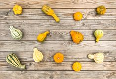 Fundo de madeira rústico Autumn Thanksgiving da abóbora Fotos de Stock Royalty Free