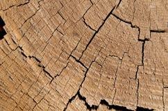 Fundo de madeira rachado Fotos de Stock