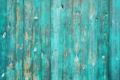 Fundo de madeira real verde da textura Vintage e velho Fotografia de Stock Royalty Free
