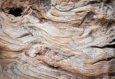 Fundo de madeira resistido da textura com quebras e linhas naturais Fotografia de Stock Royalty Free