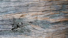 Fundo de madeira sujo da textura Fotos de Stock Royalty Free