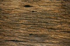 Fundo de madeira velho da casa velha Corrosão da base ou do teto no interior da casa Corrosão do fundo de madeira e da área vazia imagem de stock