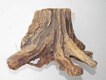 Fundo de madeira velho da textura Fotografia de Stock