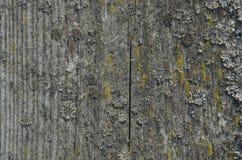 Fundo de madeira velho da textura da tabela Superfície abstrata Feche acima da madeira rústica escura feita da textura de madeira imagem de stock royalty free