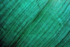 Fundo de madeira verde imagens de stock
