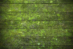 Fundo de madeira verde Fotografia de Stock