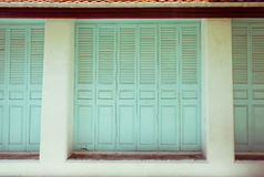Fundo de madeira verde das portas Fotos de Stock Royalty Free