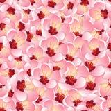 Fundo de Momo Peach Flower Blossom Seamless Ilustração do vetor ilustração stock