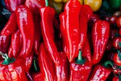 Fundo de muitas pimentas vermelhas Fotos de Stock Royalty Free