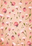 Fundo de papel cor-de-rosa com flores das rosas Fotografia de Stock Royalty Free