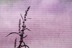Fundo de papel da flor Foto de Stock Royalty Free