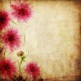 Fundo de papel velho com flores Fotos de Stock Royalty Free