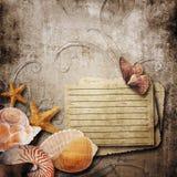 fundo de papel velho com shell bonitos do mar imagens de stock royalty free