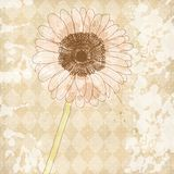Fundo de papel velho do vintage com flor ilustração royalty free