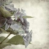 Fundo de papel velho Textured Fotografia de Stock
