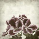 Fundo de papel velho Textured Fotos de Stock Royalty Free