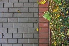 Fundo de pavimentar telhas outono imagem de stock royalty free