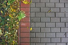Fundo de pavimentar telhas outono fotos de stock royalty free