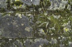 Fundo de pedra imagens de stock royalty free