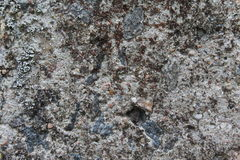 Fundo de pedra cinzento Foto de Stock Royalty Free